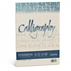 Calligraphy Pergamena Liscio Favini - naturale - fogli - A4 - 90 g (conf.50)