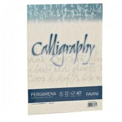 Calligraphy Pergamena Liscio Favini - naturale - fogli - A4 - 190 g (conf.50)