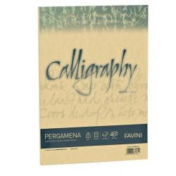 Calligraphy Pergamena Liscio Favini - oro - fogli - A4 - 90 g (conf.50)