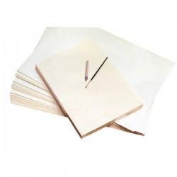 Cartoncino bianco didattico CWR - 50x70 cm -superficie liscia (conf.10)